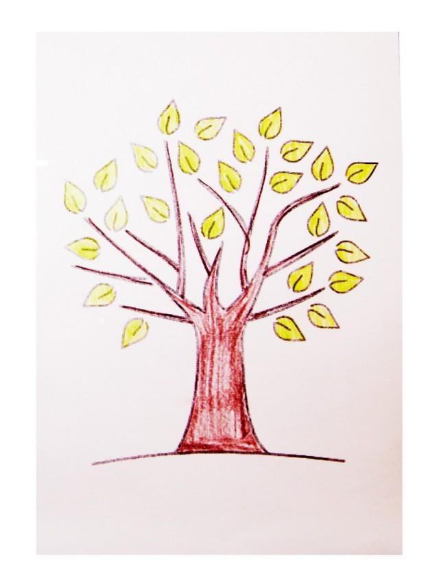 20131104-drzewo