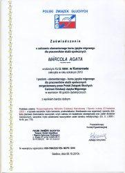 2010 - Zaświadczenie o zaliczeniu elementarnego kursu języka migowego