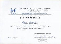 2011 - Centralne Zaburzenia Przetwarzania Słuchowego